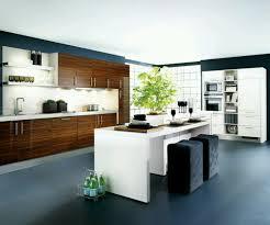modern home kitchen cabinet designs ideas new home designs
