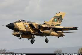الجيش الموحد الخليجي فوائده وسلبياته  Images?q=tbn:ANd9GcQlL0--cK0G-4o5Gs-8Umy1Oci1kBnp84r2ie7rL2CkS8PE9--lfQ