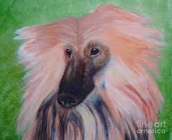 afghan hound long haired dogs afghan hound paintings page 3 of 7 fine art america