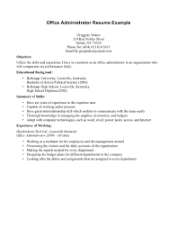 Resume Example  Cover Letter Examples Idea Auditor Easy   Cover Letter Examples Ideas New Update Resume Maker  Create professional resumes online for free Sample
