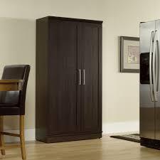 homeplus storage cabinet 411572 sauder
