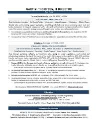 Professional Administrative Assistant Resume Example Resume Examples