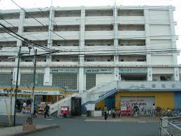 Kogane-Jōshi Station