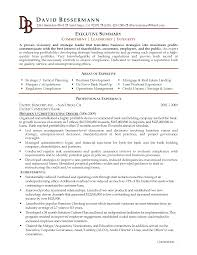 Qualifications Summary Resume Example by Baffling Executive Summary Resume Example