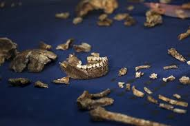 Why Don     t We Know the Age of the New Ancient Human  Homo Naledi