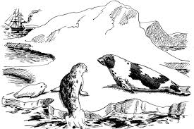 harp coloring page marine animal coloring pages