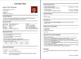 Resume Headline Examples by Fresher Resume Headline Examples Resume For Your Job Application