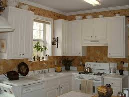 100 kitchen paint ideas best 25 small country kitchens