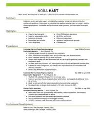 Customer Service Representatives Sales with Green Header and Summary Details