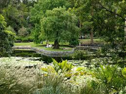 Brisbane City Botanic Gardens by Brisbane Botanic Gardens Mt Coot Tha Brisbane Botanical Gardens