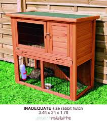 rabbit hutches reviews plans u0026 hutch directory
