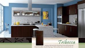 furniture glamorous rta kitchen cabinets with marble flooring and