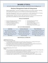 Director Of It Resume Examples by Business Owner Resume Sample U0026 Writing Guide Rwd