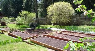 Planning A Raised Bed Vegetable Garden by Eartheasy Bloghow To Build A Raised Garden Bed On Sloping Uneven
