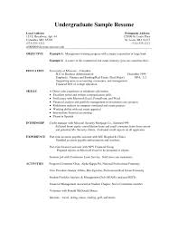 Basic Resume Templates     Hloom com happytom co     Example Resume  Microsoft Word      Resume Template Download With Additional Skills And Experience For Administrative