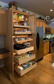 Kitchen Cabinets With Pull Out Shelves by 100 Pantry Cabinets Furniture Corner Storage Cabinet Rustic