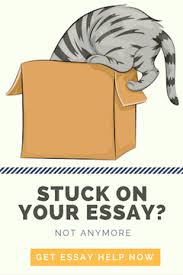 How to write an art comparison essay essay on the short story the necklace