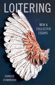 best books on resume writing loitering new and collected essays charles d ambrosio loitering new and collected essays charles d ambrosio 9781935639879 amazon com books