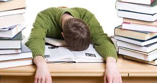 Paper order paper help term paper help paper writers Metricer com     FAMU Online