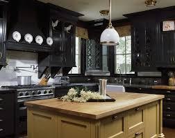 Elegant Kitchen Designs by 30 Best Black Kitchen Cabinets Kitchen Design Ideas With Black