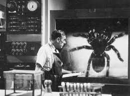 Edwin Rand : Actor - Films, episodes and roles. - 74677-Tarantula-12198706870