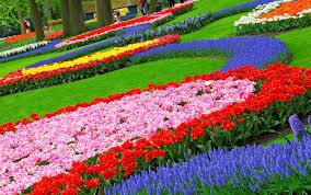garden design planner ideasgarden with japanese zen flower ideas