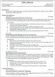 Sample Objectives In Resume For It by Download Resume Objectives For It Professionals