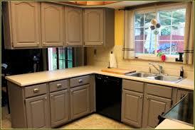 home depot kitchen cabinet door knobs tehranway decoration