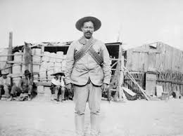 Viva Mexico   Nayar  Mexico  The Mexican Revolution