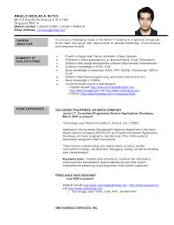 dba sample resume engineer cover letter top test engineer cover letter samples systems engineer resume