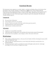 Combination Resume Format Resume Summary Of Qualifications Example Resume Summary Of
