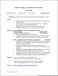ideas about Resume Templates on Pinterest   Resume  Simple