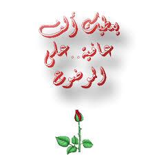 خلفيات استديو عاليه الجوده الحديقه الغامضه