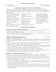Management Consultant Resume Sample by Technical Consultant Resume Samples Free Sales Consultant Resume