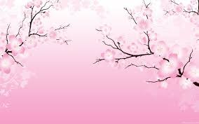 cherry blossom wallpaper for walls cherry blossom desktop