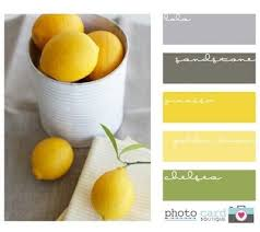 Gray Color Schemes For Kitchens by Yellow Color Schemes Brilliant Of Yellow Green Grey Color Scheme