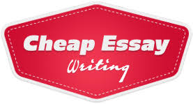 essay writer net FAMU Online MBA Essay Writing with Professional Academic Writers If you lack either one of those MBA Essay Writing Service will gladly help you with producing a great
