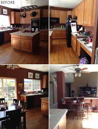 Remove Kitchen Cabinets by Little Black Bugs In Kitchen Cabinets Archives Stirkitchenstore
