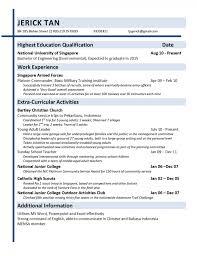 Petroleum Engineer Resume  resume electrical engineer  electric     resume