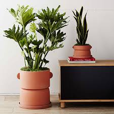 West Elm Outdoor by Commune X West Elm Terracotta Platners Potted Plants Pinterest
