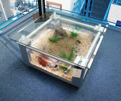 creative coffee table aquarium