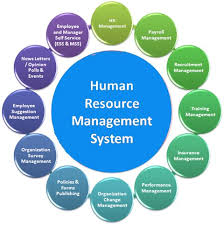 images about HR Management on Pinterest Pinterest Human Resource Management Software   The Future Made Simple
