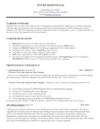 Over       CV and Resume Samples with Free Download  Chartered Accountant   CA  Articleship Resume Sample