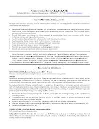 reporting analyst sample resume internal audit analyst sample resume sioncoltd com ideas of internal audit analyst sample resume with summary sample