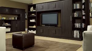 Family Room Storage Cabinets Gallery Including Built In Wall Unit - Family room wall units