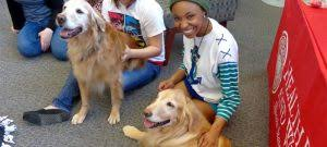 Events Archive   Illinois State Events Take a study or work break to pet certified therapy dogs and enjoy other stress relieving activities