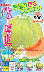 Free shipping    PCS in original package sweet melon seeds  high sugar content Japan Cupid hami