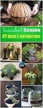 581 best garden tips images on pinterest gardening plants and