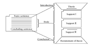 essay types examples Free Essays and Papers