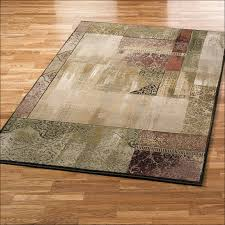Discount Indoor Outdoor Rugs Area Rugs Stupefying Cheap 8x10 Rugs Cheap 8x10 Indoor Outdoor